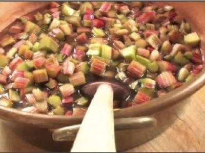 Apprendre facile cours conseils tutoriels formations - Comment cultiver de la rhubarbe ...