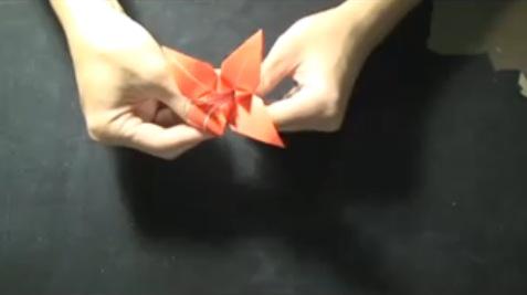 Comment Réaliser Une Fleur Diris En Origami Apprendre Facile