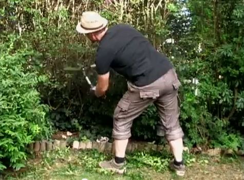 Jardin apprendre facile - Tailler une haie ...