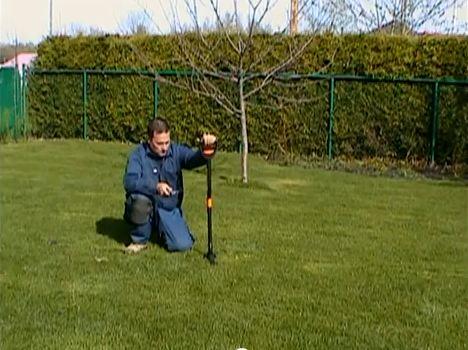 comment éradiquer les pissenlits d'une pelouse ? apprendre facile !